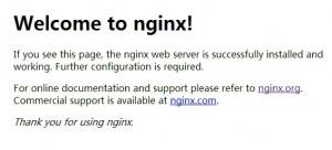 [分享]解决nginx重启错误